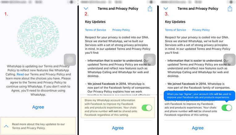 WhatsApp privacy policy screenshot